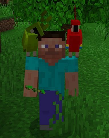 In fact you even have the ability to wear parrots on your shoulders should you desire it