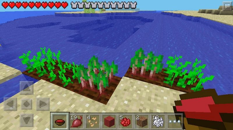 How To Make Beetroot Soup In Minecraft