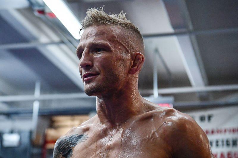 UFC Fight Night Cejudo v Dillashaw: Open Workouts