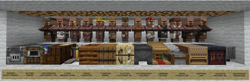 An image of all villagers and their respective job blocks (Image via Reddit)