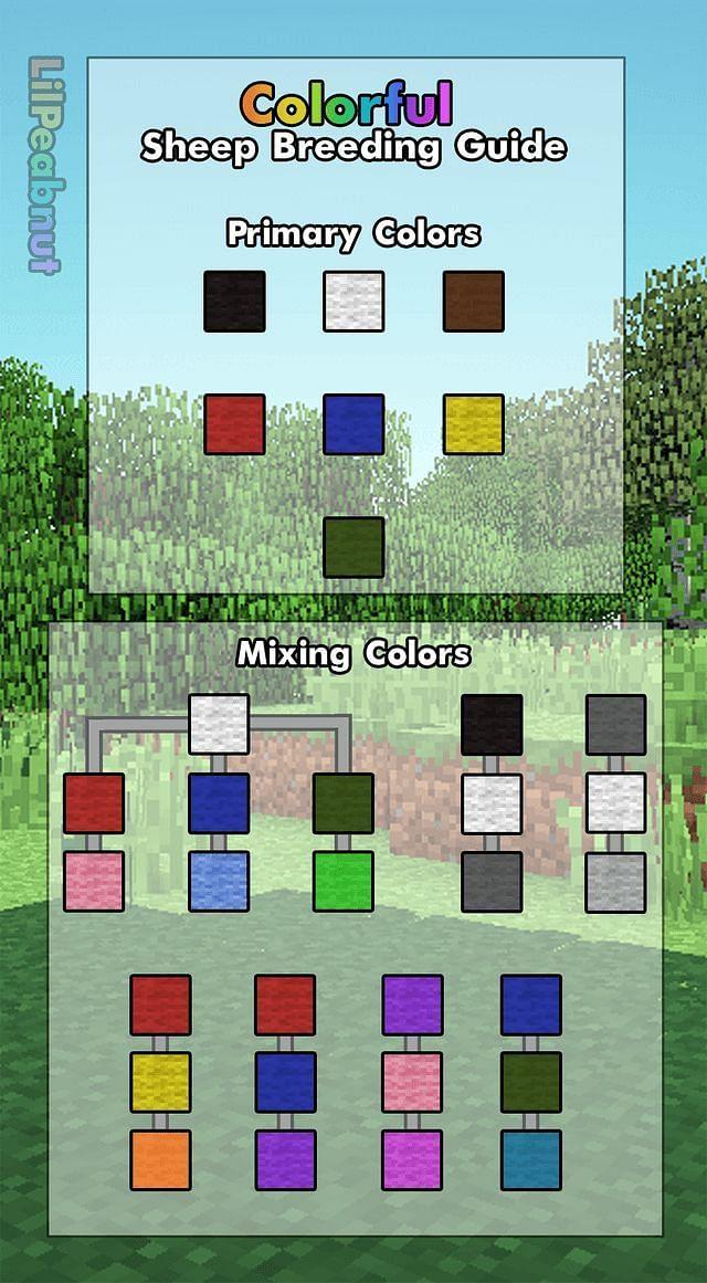Sheep color guide (Image via Reddit)