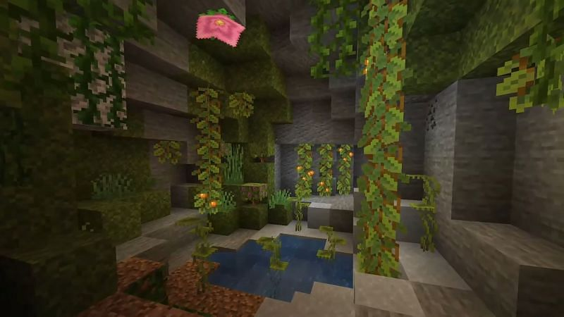 Dripleaves are a new installment to the Minecraft world (Image via Minecraft Wiki)