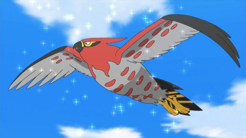 Talonflame (Image via The Pokemon Company)
