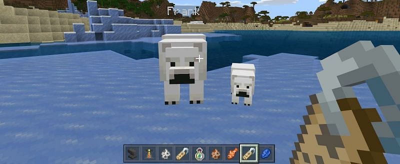 Then change the name tag to a name you would like to give your polar bear and then retrieve the used name tag from the anvil.