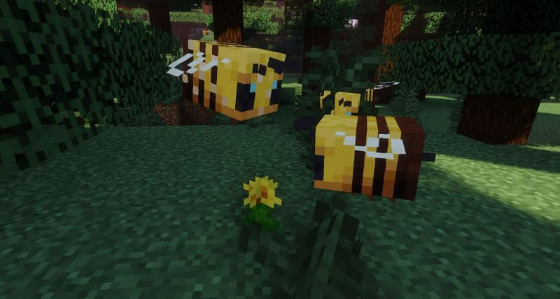 Shown: A couple of Bee Bros happily working on pollinating the Overworld (Image via Minecraft)