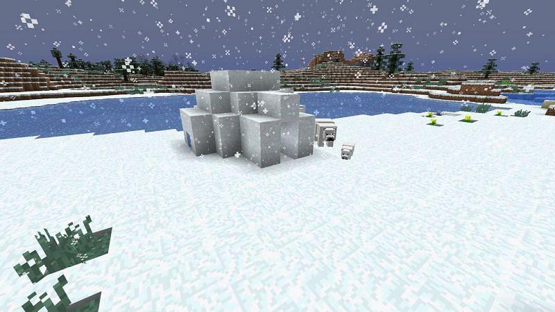 (Image via Minecraft wiki)