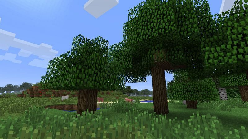 Edge of a Minecraft forest (Image via feed-the-beast-wiki)