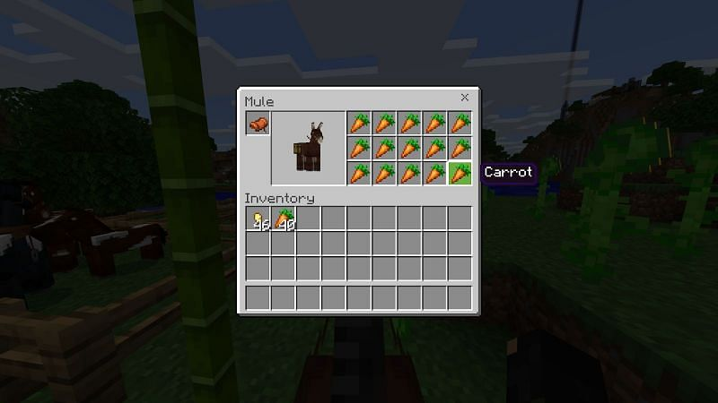 Things to do with horses in Minecraft