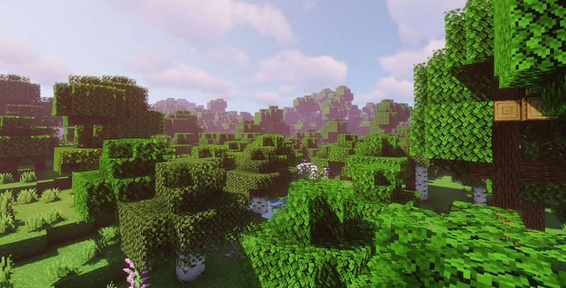 A beautiful shot of the various trees in Minecraft (Image via Minecraft)