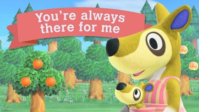 (Immagine tramite Animal Crossing World)