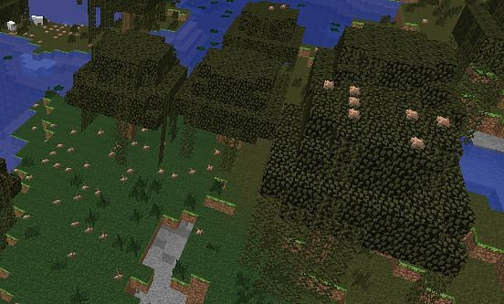 Minecraft mushrooms growing in a swamp (Image via bug.mojang.com)