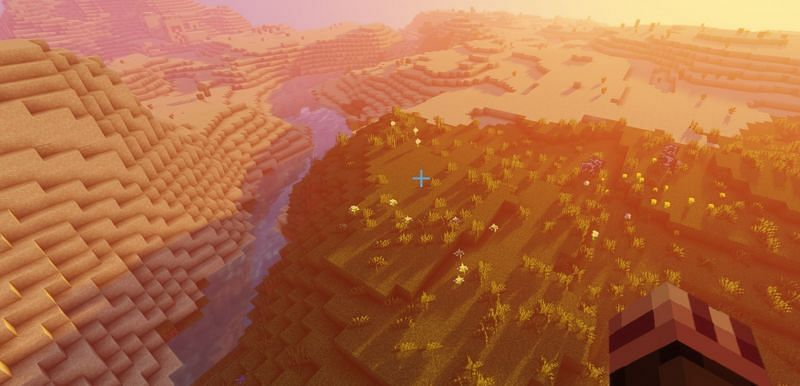 The spawn of seed 400061, with tons of animals nearby for food (Image via Minecraft)