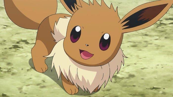 Eevee in the anime (Image via The Pokemon Company)