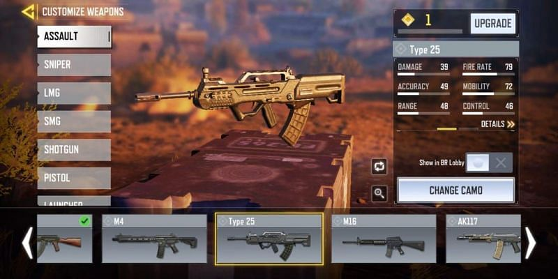 Type 25 with in-game stats (Image via Activision)