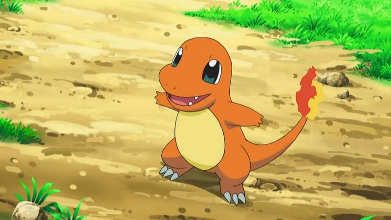 Charmander in the anime (Image via The Pokemon Company)