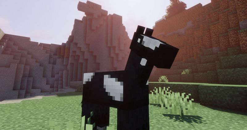 Shown: A beautiful black and white spotted Horse (Image via Minecraft)