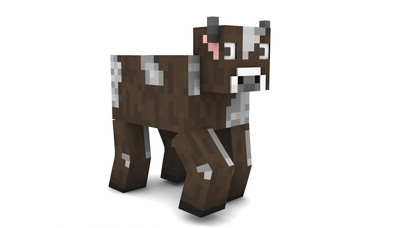 Cows in Minecraft (Image via YouTube)