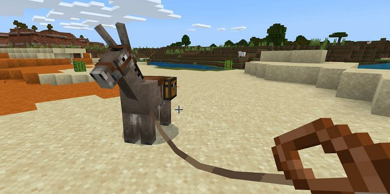 How to use donkey in Minecraft