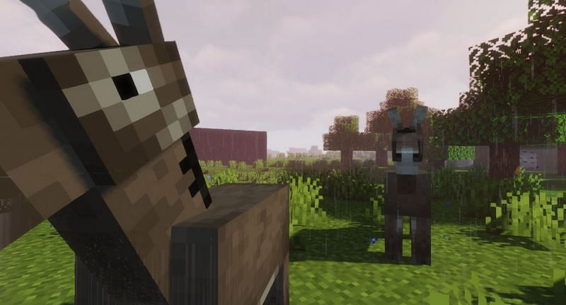 Donkeys are a useful mob in Minecraft (Image via Minecraft)