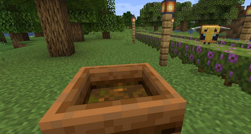 Shown: A Composter filled will Azalea (Image via Minecraft)