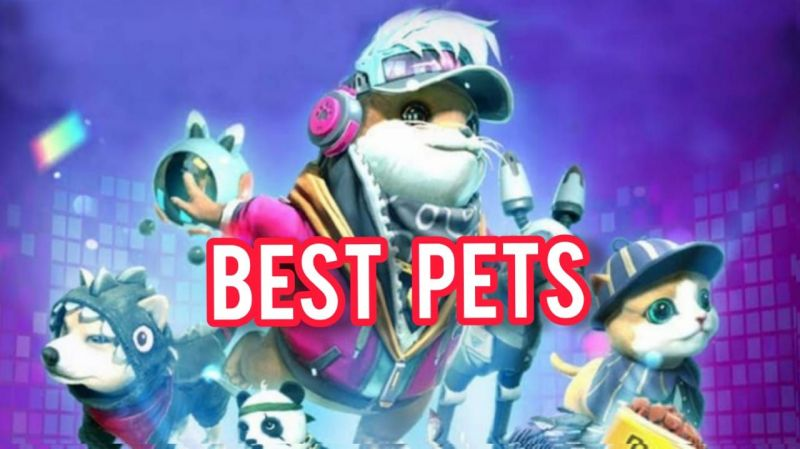 The best pets to pair with Chrono and DJ Alok for ranked matches