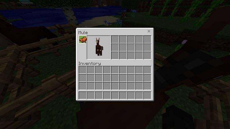 Behavior of Mules in Minecraft