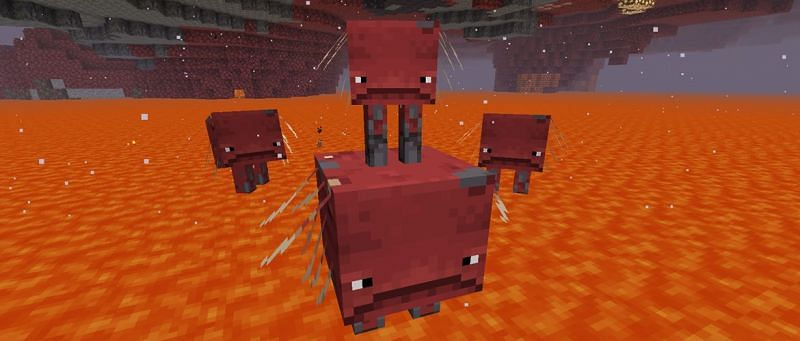Strides in Minecraft (Image via Minecraft)