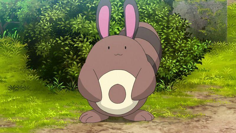 Sentret (Image via The Pokemon Company)