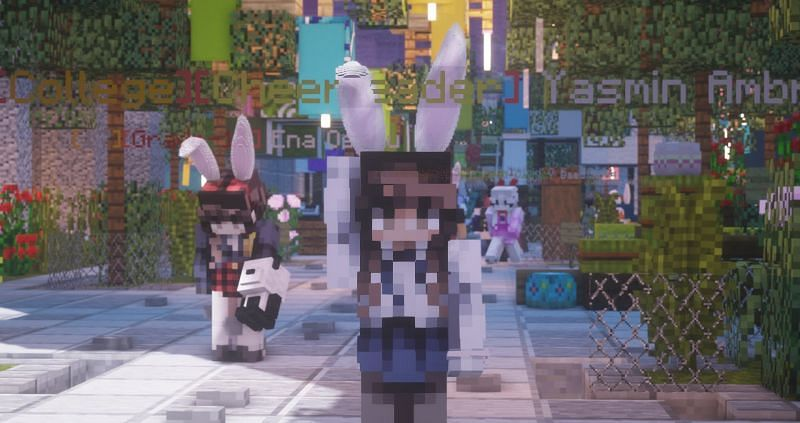 Roleplay Hub is the most popular dedicated Minecraft roleplaying server