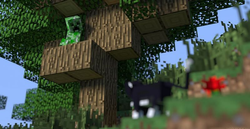 Creeper scared of ocelot Minecraft (Image via hypixel)
