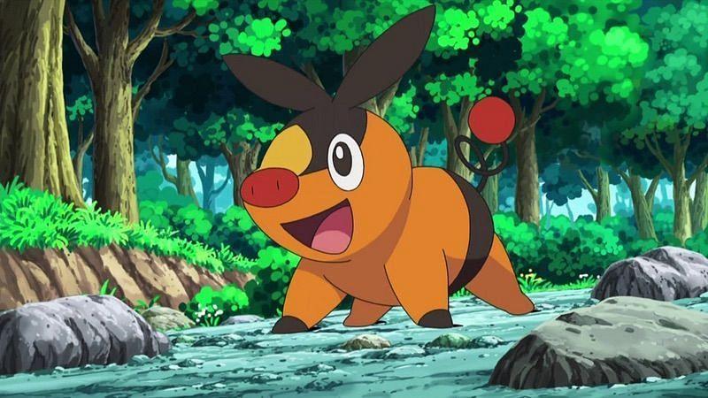 Tepig in the anime (Image via The Pokemon Company)