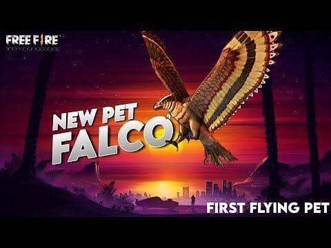 Falcon को कैसे हासिल करें