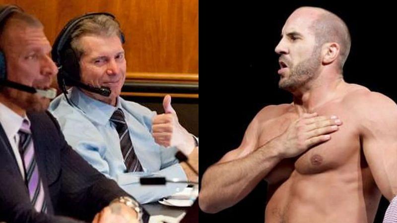 Triple H, Vince McMahon, and Cesaro.