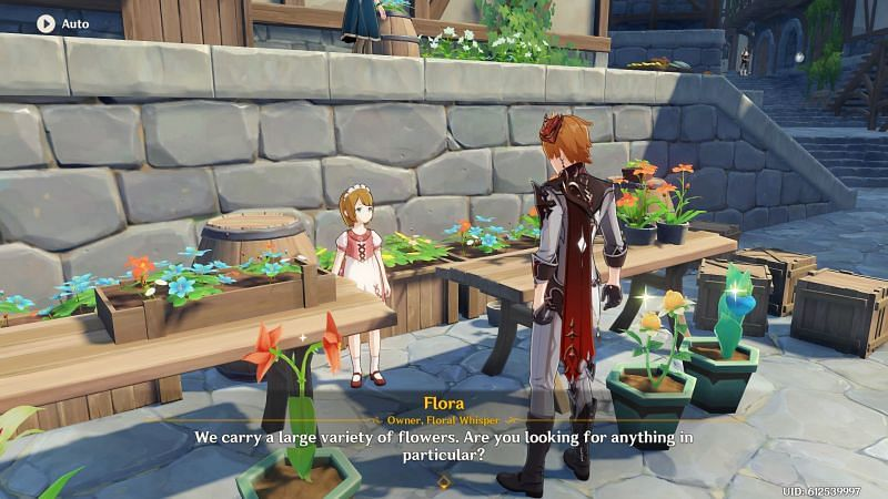 Genshin Impact NPC: Flora