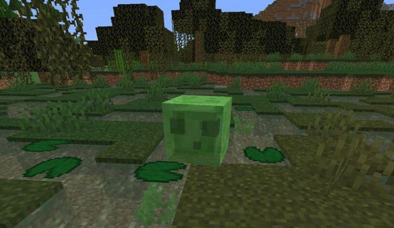 Minecraft slime spawning in a swamp (Image via gamespredator)