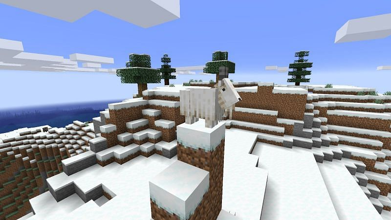 Goat Minecraft