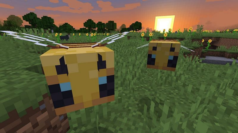 Minecraft bees (Image via wallpapercave)