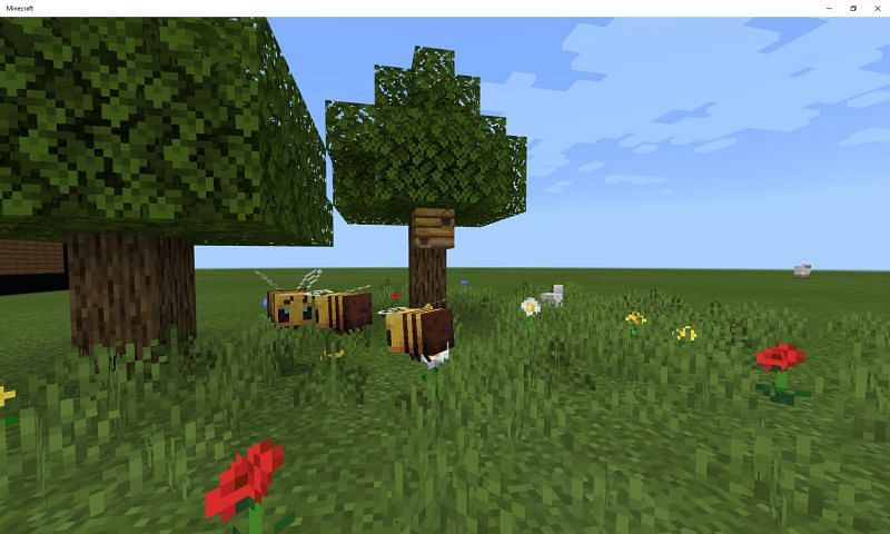 A couple of bees seen hovering above the ground (Image via Mojang)