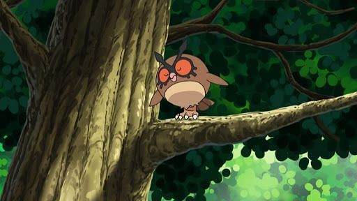 Hoothoot in the anime (Image via The Pokemon Company