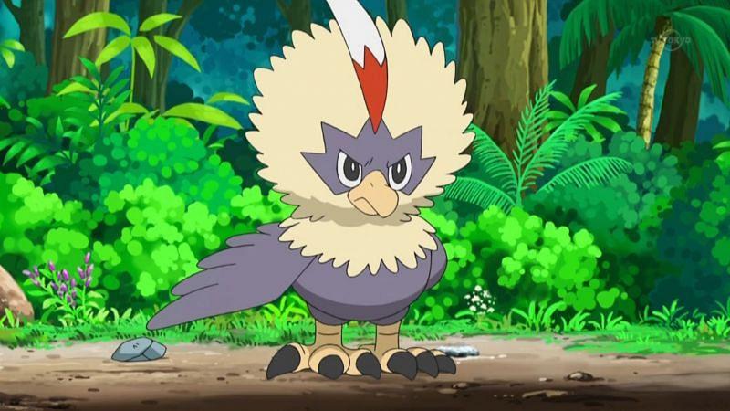A normal Rufflet in the Pokemon anime (Image via The Pokemon Company)
