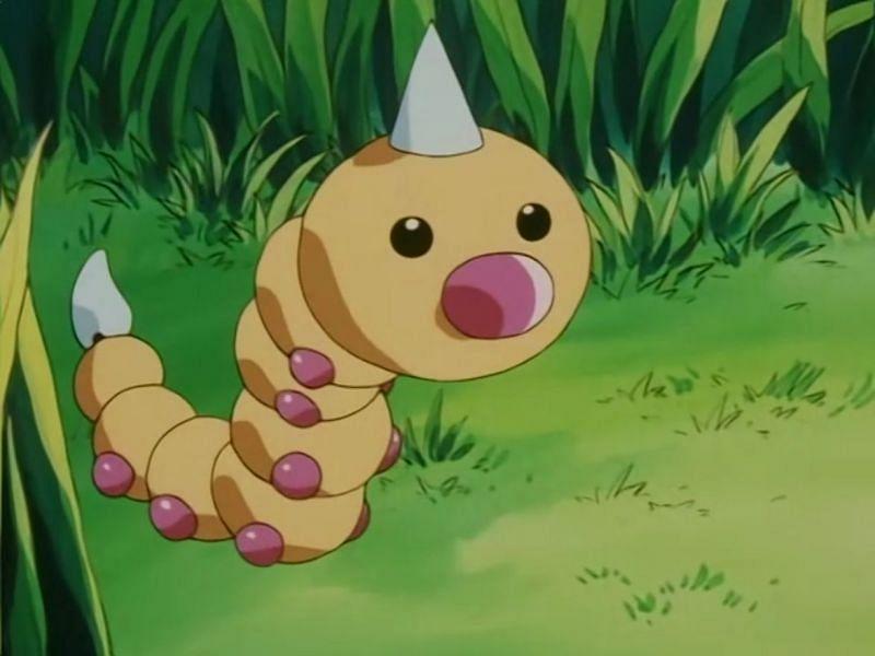 Weedle in the anime (Image via The Pokemon Company)