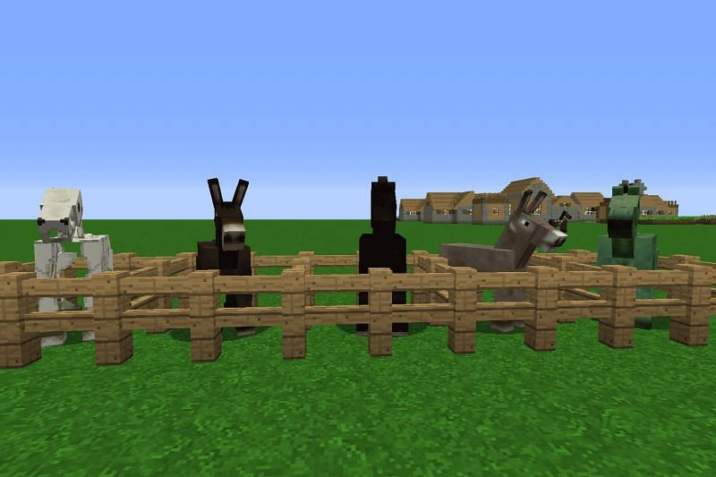 Mules in Minecraft (Image via livewire)