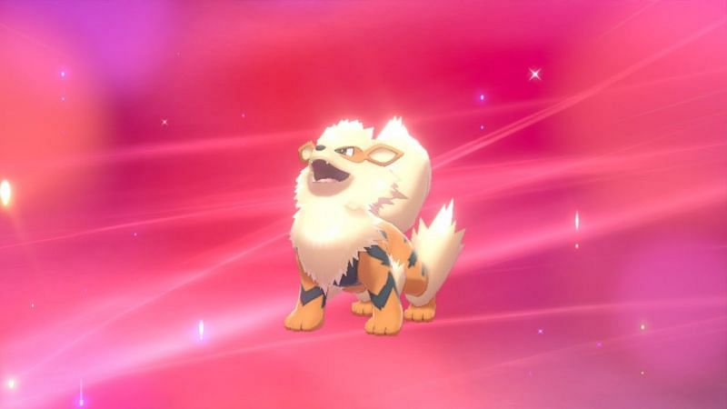 Quick way to catch Arcanine in Pokemon sword and Shield