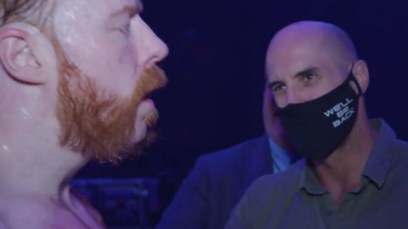 Sheamus (RAW) and Cesaro (SmackDown) perform on different WWE brands.