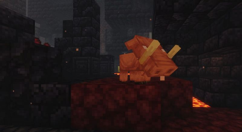 Hoglins have unique features that are not seen in any other Minecraft mob (Image via Minecraft)