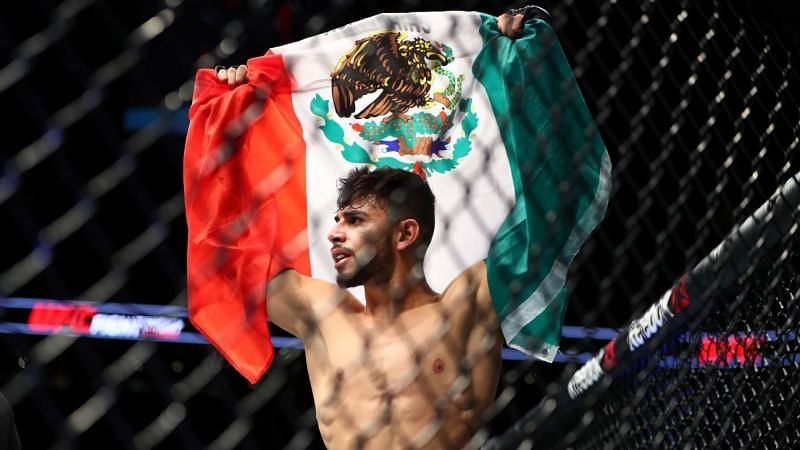 Yair Rodriguez