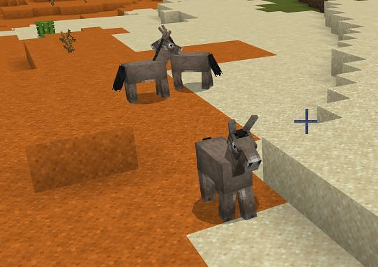 Where To Find and How to Tame Donkey in Minecraft