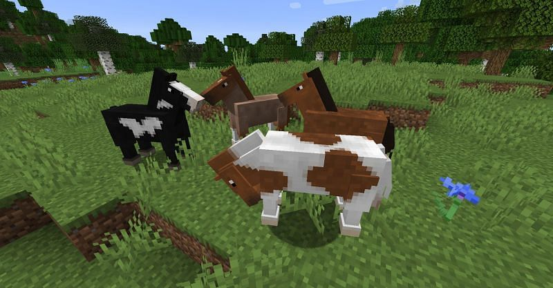 Riding horses gives players a method of transportation that is both efficient and safe (Image via Curseforge)
