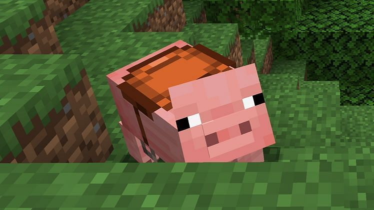A pig in Minecraft (Image via Minecraft)