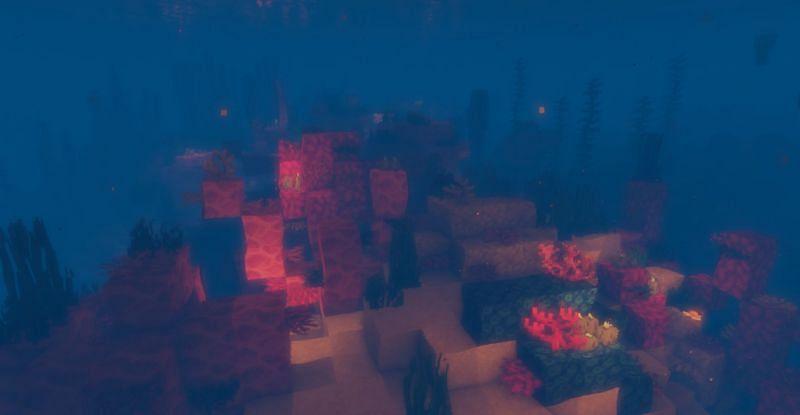 Shown: The beautiful Warm Ocean biome (Image via Minecraft)